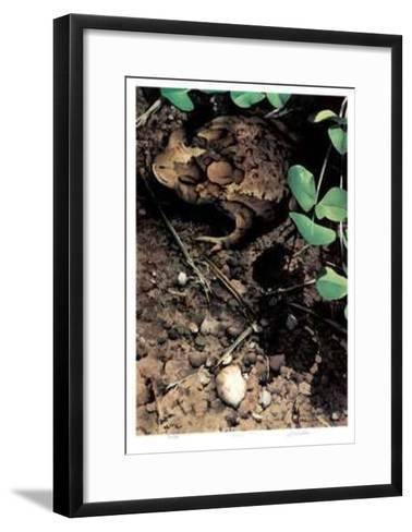 Mr. Toad-Carl Arlen-Framed Art Print