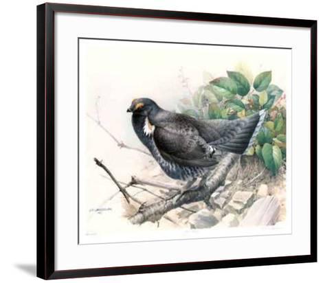 Blue Grouse-James Fenwick Lansdowne-Framed Art Print