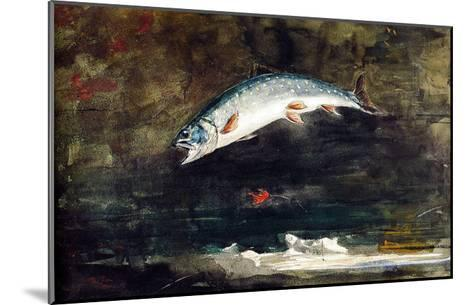 Jumping Trout-Winslow Homer-Mounted Giclee Print
