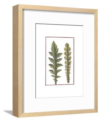 Vintage Leaf III--Framed Art Print