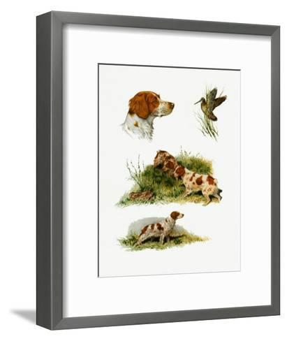 Brittany-Rial-Framed Art Print