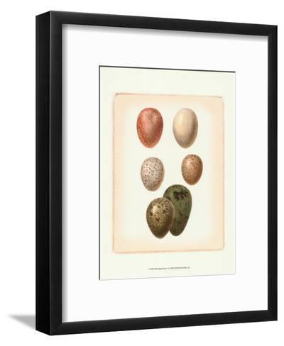 Bird Egg Study VI--Framed Art Print