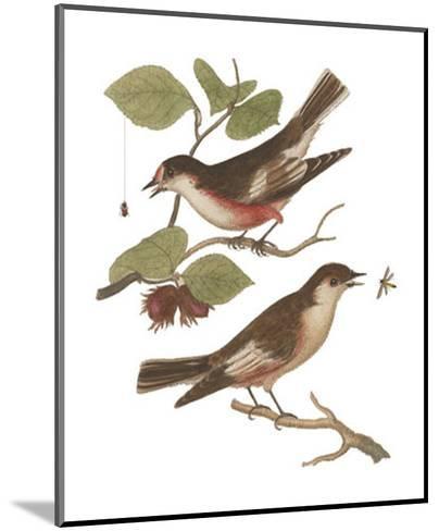 Antique Bird Pair I-James Bolton-Mounted Art Print