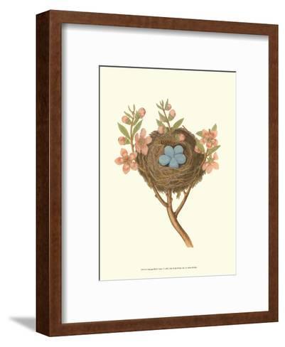 Antique Bird's Nest I-James Bolton-Framed Art Print