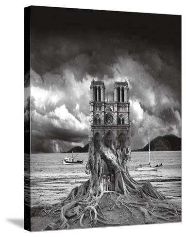 Stumped-Thomas Barbey-Stretched Canvas Print