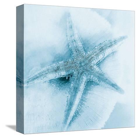 Nautica I-Alan Blaustein-Stretched Canvas Print