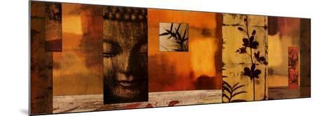 Dharma I-Chris Donovan-Mounted Art Print