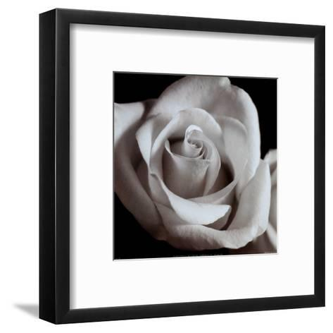 Open Rose--Framed Art Print