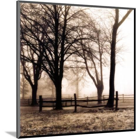 Woods with Fence-Harold Silverman-Mounted Art Print