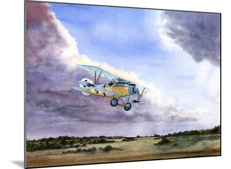 Abatros-Douglas Castleman-Mounted Giclee Print