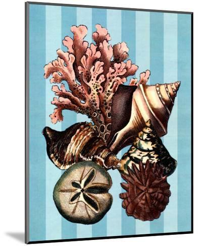 Shell and Coral on Aqua I--Mounted Art Print