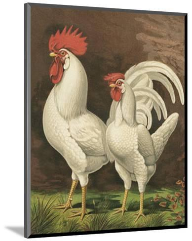 Roosters VI-Cassell-Mounted Art Print