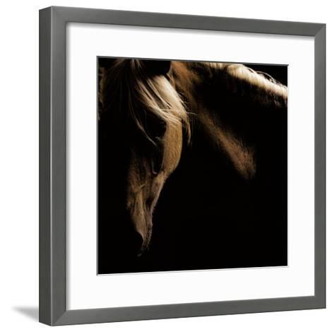 Spirit Horse-Tony Stromberg-Framed Art Print