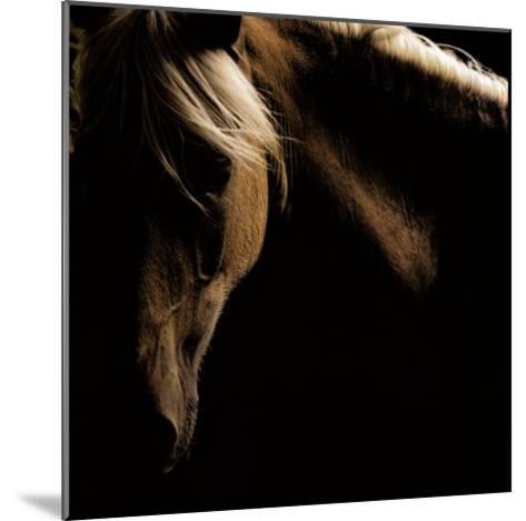 Spirit Horse-Tony Stromberg-Mounted Art Print