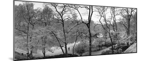 The Pond and Gapstow Bridge, Central Park, 1992-Bruce Davidson-Mounted Art Print