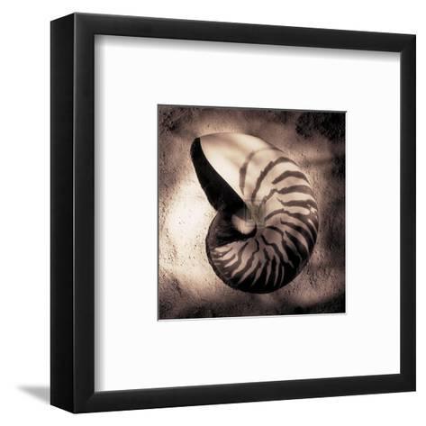 Nautilus-Laurel Wade-Framed Art Print