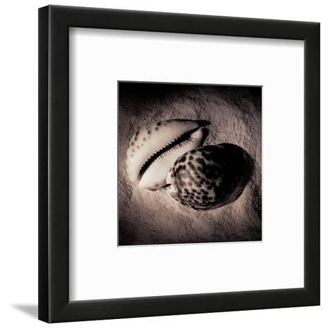 Cowrie-Laurel Wade-Framed Art Print