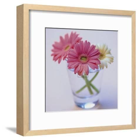 Pretty in Pink--Framed Art Print