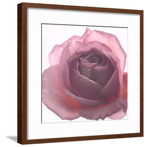 Aroma II-Katja Marzahn-Framed Art Print