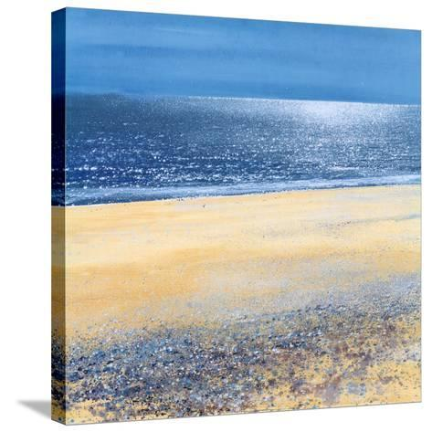 Silver Tide-Paul Evans-Stretched Canvas Print