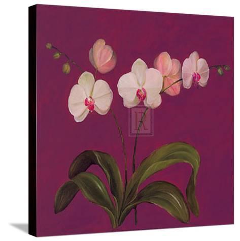 Moon Shadows IV-Mimi Roberts-Stretched Canvas Print