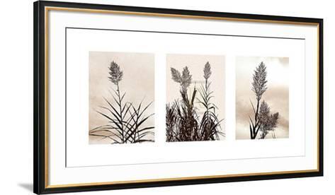 Grasslands-Jon Hart Gardey-Framed Art Print