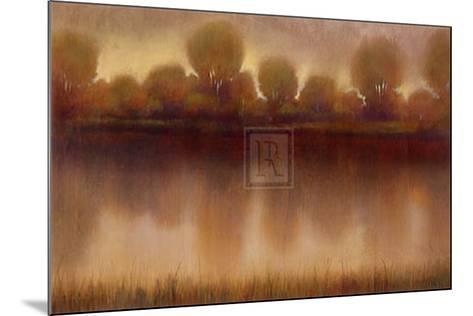 Marsh of the Warm Sunset-Albert Williams-Mounted Art Print
