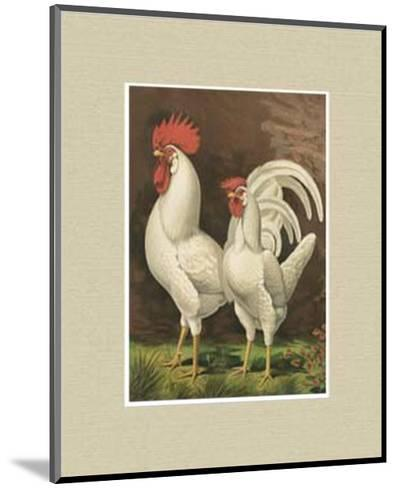 Roosters with Mat VI-Cassell's Poultry Book-Mounted Art Print