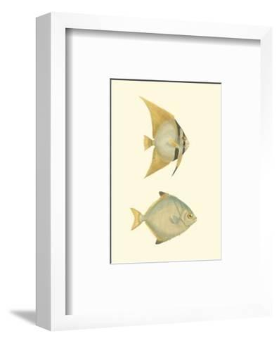 Antique Tropical Fish III--Framed Art Print