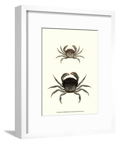 Antique Crab I-James Sowerby-Framed Art Print