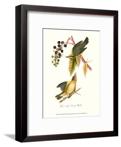 Warbler-John James Audubon-Framed Art Print
