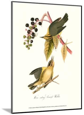 Warbler-John James Audubon-Mounted Art Print