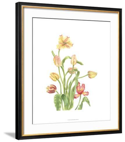 Tulip Spray II-Pamela Shirley-Framed Art Print