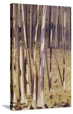Bosque IV-Jesus Barranco-Stretched Canvas Print