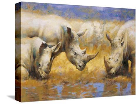 Rhinoceros-Joaquin Moragues-Stretched Canvas Print
