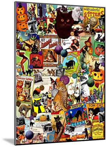 The Kitty Cat Meow-Kate Ward Thacker-Mounted Giclee Print