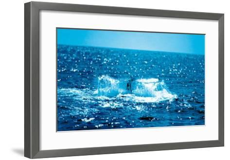 Unternehmung--Framed Art Print
