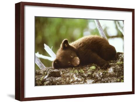Rough Day--Framed Art Print