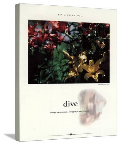 Dive-Francis Pelletier-Stretched Canvas Print