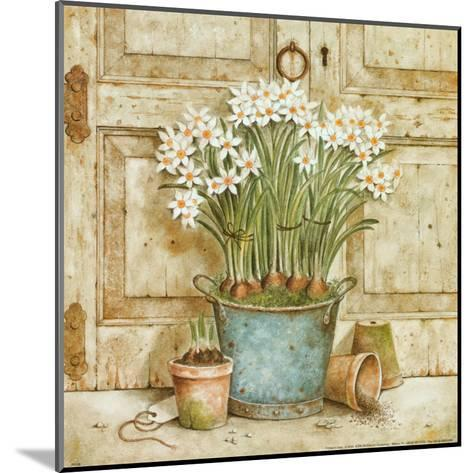 Potted Flowers II-Eric Barjot-Mounted Art Print