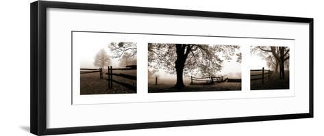 Frosted View-Harold Silverman-Framed Art Print