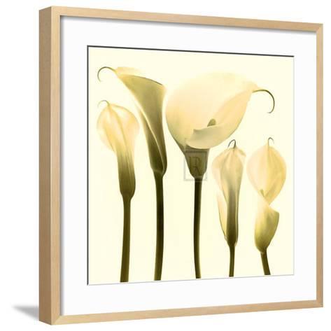 Lily Cluster-Katja Marzahn-Framed Art Print