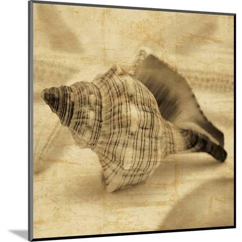Conch-John Seba-Mounted Art Print