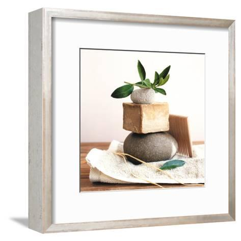 Pile with Olive Tree Branch-Amelie Vuillon-Framed Art Print