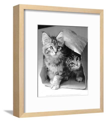 Hide and seek-Vikki Hart-Framed Art Print