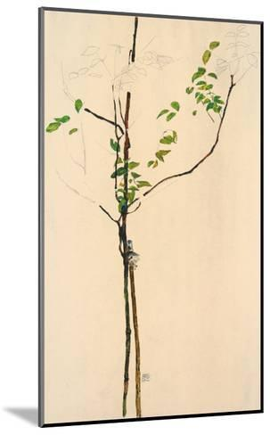 Young Tree-Egon Schiele-Mounted Collectable Print