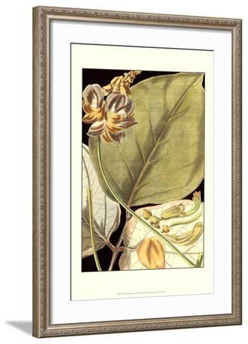 Tranquil Tropical Leaves I--Framed Art Print