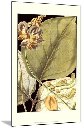 Tranquil Tropical Leaves I--Mounted Art Print