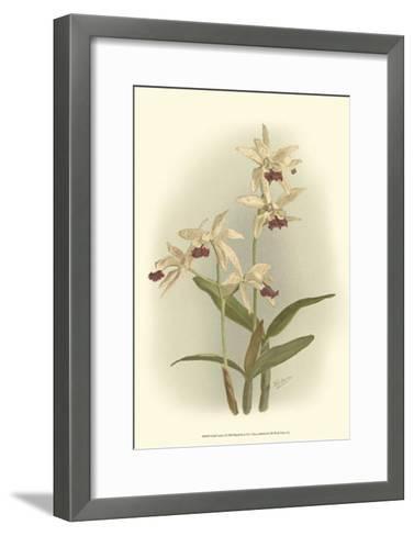 Orchid Garden I-H^g^ Moon-Framed Art Print