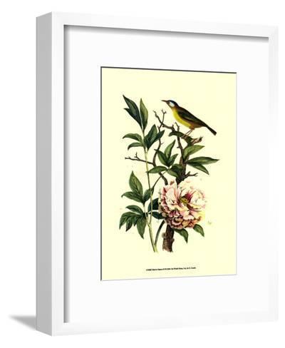 Bird in Nature III-E^ Guerin-Framed Art Print
